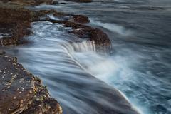 Narrabeen Flow (RoosterMan64) Tags: australia leefilters longexposure nsw narrabeen rockshelf seascape sunrise
