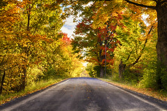 Down the Only Road I've Ever Known (flashfix) Tags: october142016 2016 2016inphotos nikond7000 nikon ottawa ontario canada 40mm road travel autumn trees colourful nature mothernature clouds yellow red green orange grass leaves landscape merbleue