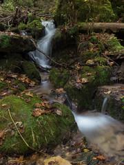 P1150121 (TallGrass-IA) Tags: edgewood iowa unitedstates us panasonic g6 1235 lumix micro43 microfourthirds waterfalls longexposure hiking outdoor nature moss