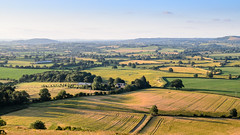 #BlackmoreVale in #Dorset (Joe Dunckley) Tags: blackmorevale childokeford dorset england hambledonhill hardycountry northdorset stourvalley uk agriculture farm farming farmland field hill landscape meadow nature pasture