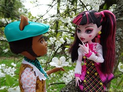 Wanna be my girlfriend? (Suteki_Neko) Tags: flowers garden girlfriend doll cherryblossom monsterhigh draculaura clawdwolf