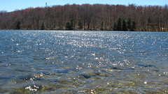 Berry Pond. (MTBradley) Tags: sunlight water ma spring pond berrypond berkshirecounty pittsfieldstateforest