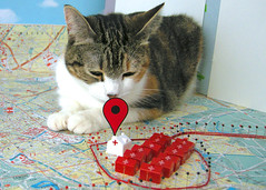 3D Google Map and Giant Cat (hine) Tags: house cat video google map craft theymightbegiants there animation tmbg prop stopmotion nanobots behindthescene hinemizushima insecthospital