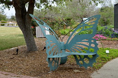 Butterfly Seat (The Brit_2) Tags: gardens botanical texas tx south christi corpus