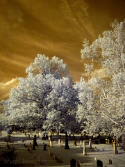 infrared graveyard (BryanBowman) Tags: alexandria ir photography infrared
