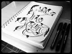 Only The Young (marcelsan) Tags: art typography sketch hand arte letters type tipografia tipo caligrafia illustrativetypography abduzeedos typographymania flickrandroidapp:filter=orca