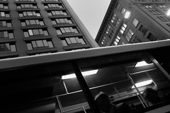 S0703919_S (Konrad Lembcke) Tags: street people woman white man black look sign night stairs train person photography evening newspaper movement opera fuji traffic taxi sydney australia backpack commuter intersection indicator 人们 黑色 白色 夜 汽车 女人 澳大利亚 道 男人 出租车 行人 流量 悉尼 工人 傍晚 请登录 x100s 后步行运行