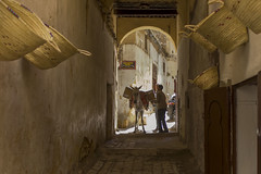 Souk - Fez - Morocco (wietsej) Tags: street donkey morocco fez souk sonyalphanex7 sonycarlzeiss24mmf18lenssel24f18z