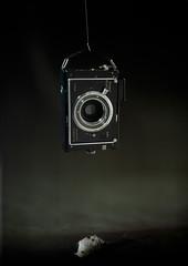 BIRDHOUSE IN YOUR SOUL 2 (Brana Vojnovic) Tags: plaubel makina camera