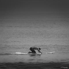 I'm never bored (.KiLTRo.) Tags: malibu california unitedstates kiltro rider surfer surf surfing ocean sea outdoor