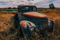 So Long, Lonesome (Pedalhead'71) Tags: ewan washington abandoned truck landscpe palouse