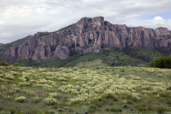 Panicles of flowers, Pinnacles of stone (Jeff Mitton) Tags: landscape wildflowers locoweed oxytropissericea colorado meadow mountains scenic westernlandscape earthnaturelife wondersofnature