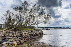 larkollen (Dirk Rosin) Tags: larkollen norge norway norwegen orte rygge sttvik stfold