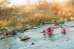cart land (MitchBoudreau) Tags: outdoor river grocery cart water stream grass abandoned vintage film weird 35mm summer prime toronto canada ontario