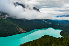 Storm over Peyto Lake (Erik Pronske) Tags: banffnationalpark forest canadianrockies trees storm nationalpark rockymountains banff mountains alberta canada water emerald peytolake clouds