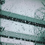 Covered in rain.