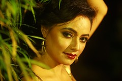 South actress MADHUCHANDAPhotos Set-4-HOT IN MODERN DRESS   (28)