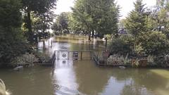 20160607171056_171055684 copy (reidpinkham) Tags: pont neuf flooding paris river park