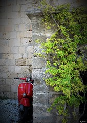 Cache-cache Vespa (Kimoufli) Tags: mur vespa vgtation rouge rhodes scooter color pierre
