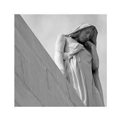 Sur la colline de Vimy (Yvan LEMEUR) Tags: vimy nordpasdecalais pasdecalais guerre 1418 19141918 grandeguerre statue sculpture canada guerremondiale seymourallward estatua mmorial souvenir