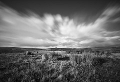 Hordron Edge Stone Circle (l4ts) Tags: landscape derbyshire peakdistrict darkpeak sevenstonesofhordron stonecircle hordronedge moscarmoor heather moorland winhill losehill blackwhite longexposure