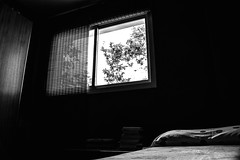 Sheets of empty canvas (alejo.365shoots) Tags: bw bed sheets window books pearl jam 365 bedroom