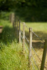 Post (Future-Echoes) Tags: 135mm 2011 barbedwire bokeh depthoffield dof essex fence hanningfield light post shade wire