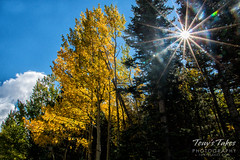September 17, 2016 - Fall colors starting to show in RMNP. (Tony's Takes)