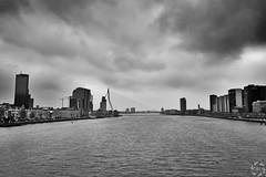 Rotterdam Sky Line (PaaulDvD) Tags: rotterdam colors river maas netherlands boat water city urban