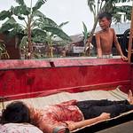 Tim Page - Vietnam War 1968 thumbnail