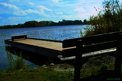 The new dock (SCOTTS WORLD) Tags: adventure america angle digital dock water lake light leaves landscape lakeorion lakesixteen panasonic pov perspective park oaklandcounty orion sky shadow sunlight fun fall bluesky clouds country rural trees bench michigan midwest nature october 2016 lilypads