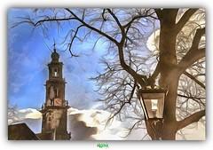 DE WESTERKERK in AMSTERDAM (3) (rgisa) Tags: westerkerk amsterdam tree baum boom arbre lamp post