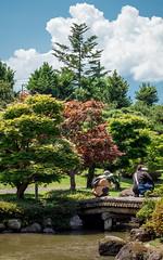 Pond Gazing (campra) Tags: japan aomori  hirosaki  fujita garden  park green cloud pond