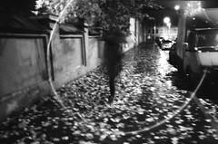 (Ivan.Pavlukhin) Tags: olympus mjuii rain autumn night umbrella saintpetersburg street analog 35mm film monochrome ilford xp2 bw blackandwhite
