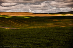 Dramatic Reading (Culinary Fool) Tags: palouse usa washington 2016 clouds shadows palousescenicbyway 70200mm28 roadtrip brendajpederson travel hills photography fields culinaryfool farm ranch may wa travelwa
