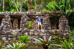 DSC_5423 (sergeysemendyaev) Tags: 2016 rio riodejaneiro brazil jardimbotanico botanicgarden     outdoor nature plants    green  rocks  beauty nikon