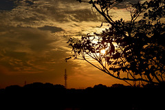 20161014_015_2 () Tags:     silhouette