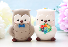 Cute Owl wedding cake toppers rainbow royal blue (PassionArte) Tags: owl gufo cake toppers bride groom ivory white tan brown gray grey purple teal green red rainbow names handmade etsy personalized unique cute country rustic funny elegant custom bouquet bridal gift anniversary
