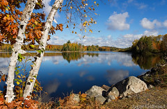 My second home..... (nature55) Tags: mercer wisconsin autumn fall fallcolors turtleflambeauflowage flowage lake water reflection