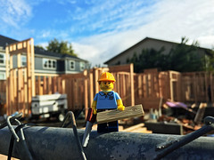 LEGO Collectible Minifigures Series 13 : Carpenter (wiredforlego) Tags: lego toy cmf plastic minifigure portland oregon pdx 71008