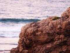 ; (nereacereza) Tags: mar azul cantabria liencres roca agua arena playa verano clido libertad