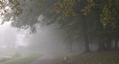 Morning Mist (chantsign) Tags: park bench fog path trees morning mood serene nomaheganpark