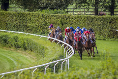 Horse race (Amando Filipe) Tags: horse race jockey rennbahn dusseldorf dsseldorf
