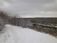 IMGP3782 (KMW2700) Tags: snow schnee edmonton alberta canada kanada rivervalleypark rivervalley flusstal walk spaziergang tree baum river flus wet nass