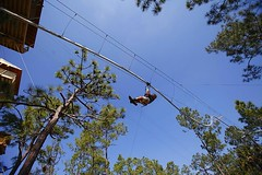 It's there: the Rollercoaster Zipline #rollercoaster #zipline #zipwire http://j.mp/2bUG7at (Skywalker Adventure Builders) Tags: high ropes course zipline zipwire construction design klimpark klimbos hochseilgarten waldseilpark skywalker