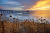Edge of Spring (Lee Sie) Tags: ocean california sunset sea sky seascape water colors clouds pier seaside surf pacific sandiego wave peak lajolla ucsd scripps deadheads lefthander uwb sdf14