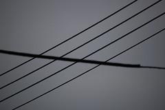 Geometra (Lograi) Tags: barcelona sky blackandwhite bw espaa byn blancoynegro blackwhite spain catalonia bn cables wires cielo catalunya catalua sabadell espanya nikond40