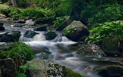 Rauschen (AndyW Harz) Tags: wasser harz fluss wald