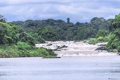 RAPIDE    ----    WATERFALLS (Ezio Donati) Tags: natura nature nikond810 africa camerun centralarea acqua water fiume river foresta forest panorama landscape