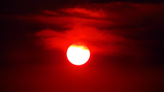 The Sun 1 (Dan Beland) Tags: thesun suncloseup forestfiresmoke red sinister perfectcircle fireysky redclouds redsky star dragonseye rockymountains idaho unitedstates usa northamerica artistic art nature canonsx720hs sunshine sunlight sun